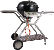 Barbecue a gas MONTREUX 570 G