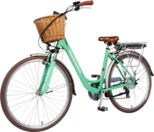 "City E-BIKE AMSTERDAM 28""  Mint"