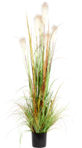 Stipa artificiale